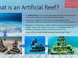 Explained - Artifical Reefs.mp4