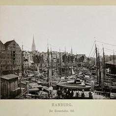 der-Binnenhafen-1536x1152.jpg