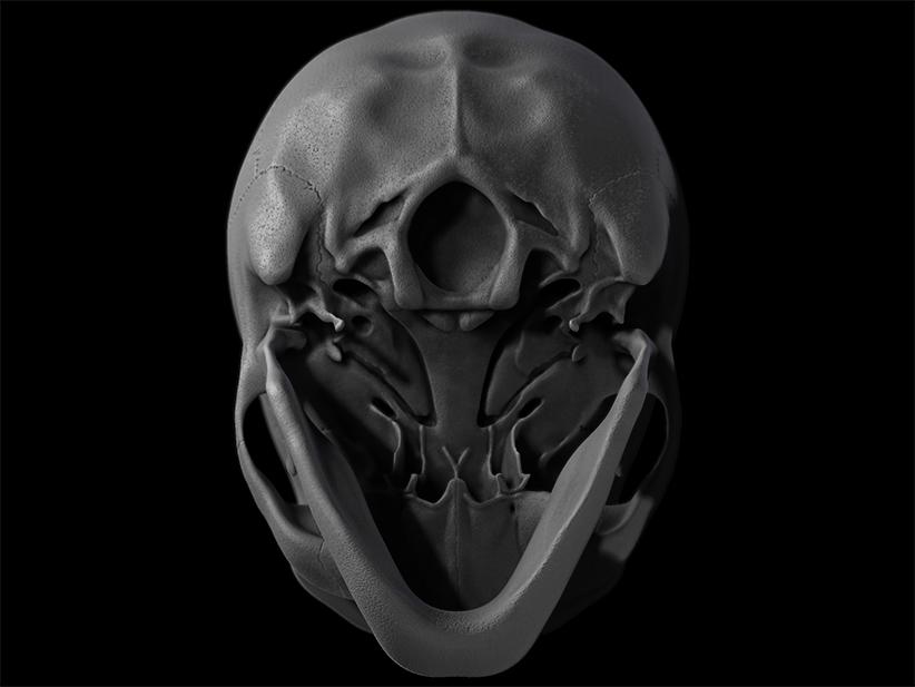 Skull_04_W.I.P.
