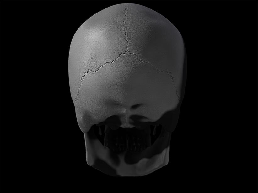 Skull_03_W.I.P.