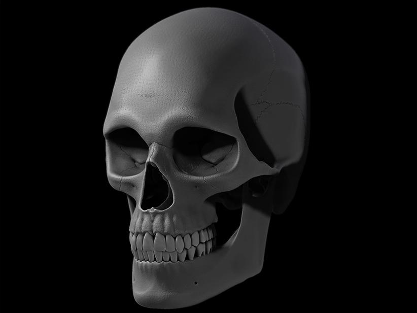 Skull_02_W.I.P.