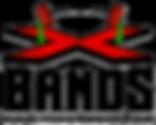 Xbandsnobackground.png