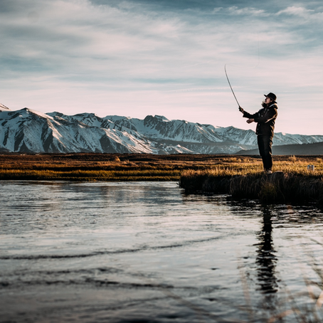 Fishing for Feds (1/22/2019)