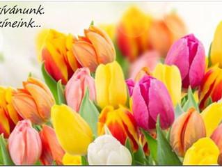 Boldog NŐnapot kívánunk minden NŐ - nek...Ti vagytok a mi színeink... :-)