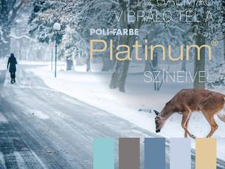 Inspirációk a tél színeivel