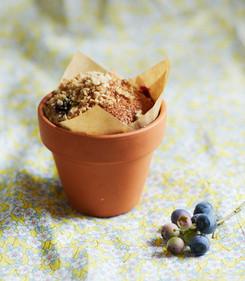 muffins 18.jpg