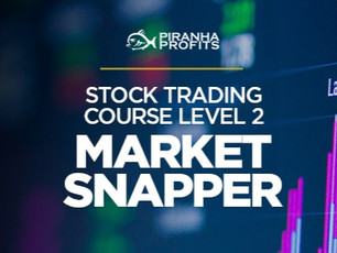 Piranha Profits – Stock Trading Course Level 2