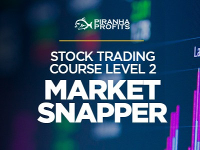 Piranha Profits – Stock Trading Course Level 2