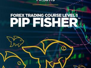 Piranha Profits – Forex Trading Course Level 1