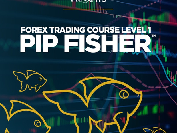 Piranha Profits – Forex Trading Course Level 1