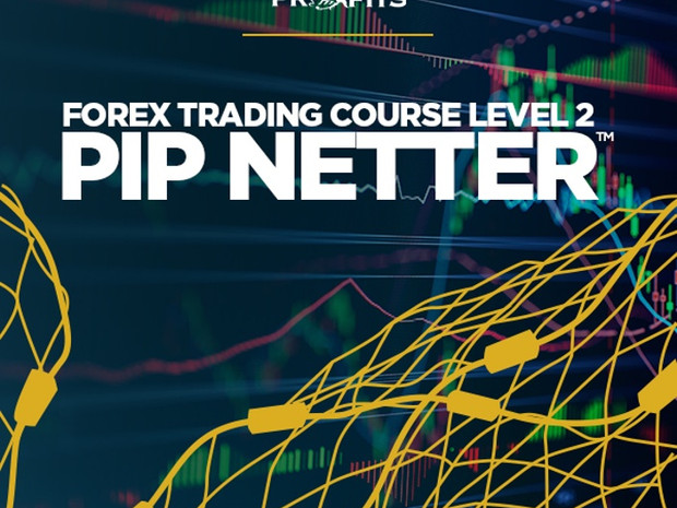 Piranha Profits – Forex Trading Course Level 2