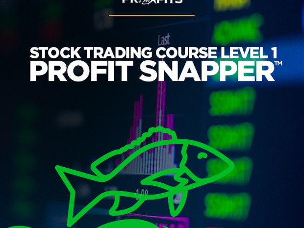Piranha Profits – Stock Trading Course Level 1