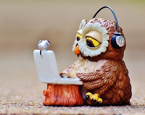 owl-947768_1280_edited.jpg