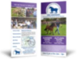 Brochure folder design & print company information, leaflets