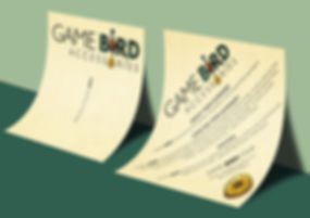GameBird square back leaflet.jpg