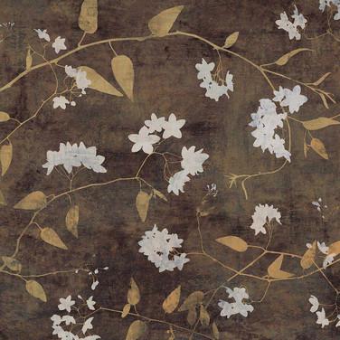 decorative5.jpg