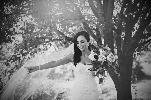 Lisa Nardella Photography