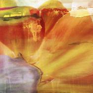 abstract11.jpg