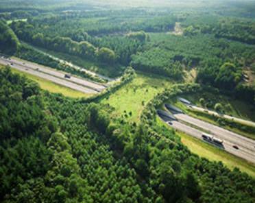 Apostando por Infraestructura Verde