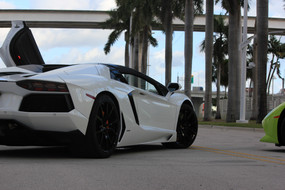 Comparing and Contrasting Exotic Car Rental Companies (What To Look For...)