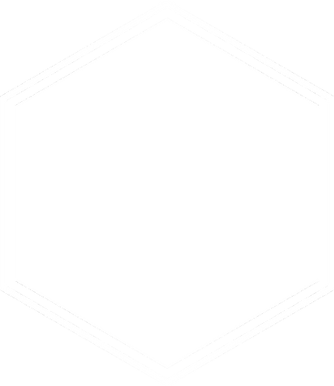 hexagon_whiteFill.png