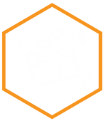 hive-brain(icons1)-08.png