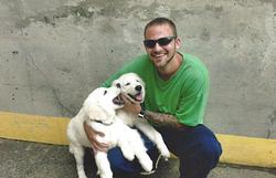 Josh and the Dogs II