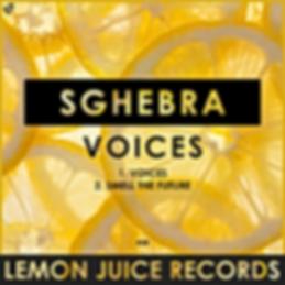 SGHEBRA - VOICES