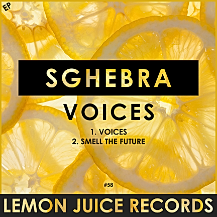 SGHEBRA - VOICES