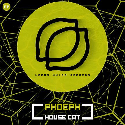 PHOEPH - HOUSE CAT