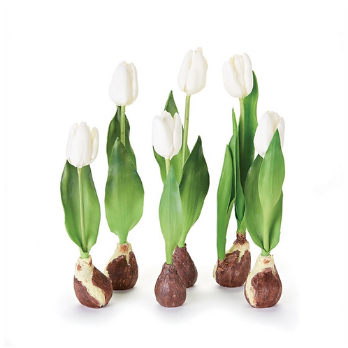 STANDING TULIP WITH BULB