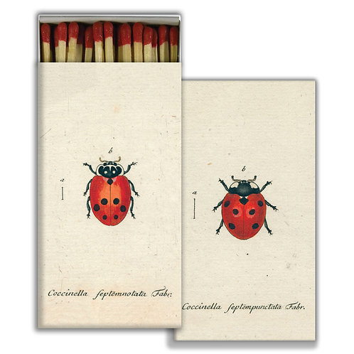 MATCHES - LITTLE LADY BUG & RED LADY BUG - RED