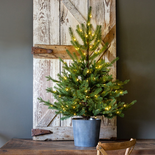 Potted Porch Fir Tree, Lighted
