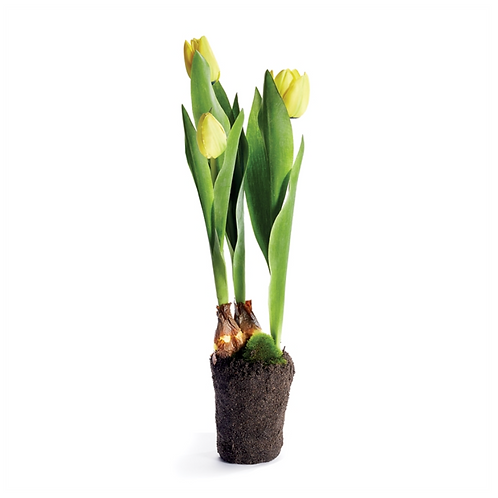"TULIP DROP-IN 18"", Yellow"