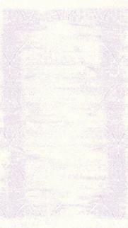 7007_M1137.jpg