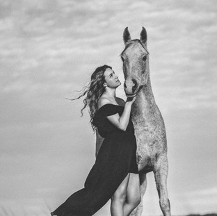 Black and white Fine art horse photograph