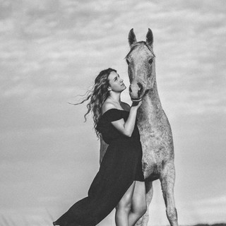 Black and white Fine art horse photograph