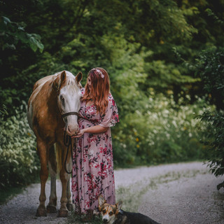 Equine Photography services