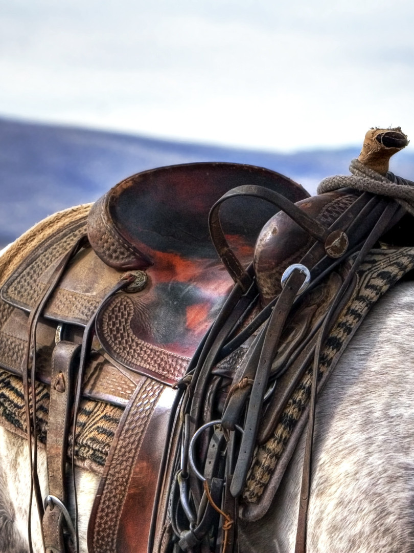 brown-and-black-leather-horse-saddle-on-