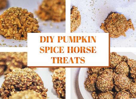 DIY Pumpkin Spice Horse Cookies