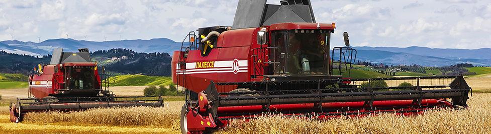 Купить палесе GS16 Купить зерноуборочный комбайн Белгород Новый Оскол