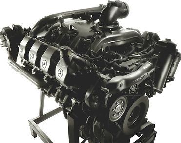 Двигатель палессе КВК 800