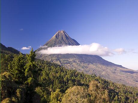 Agua Volcano from Finca El Pilar