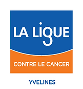 LOGO-COMITE-LIGUE-YVELINES-COUL.png