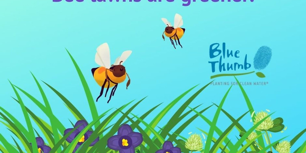 Bee Lawns