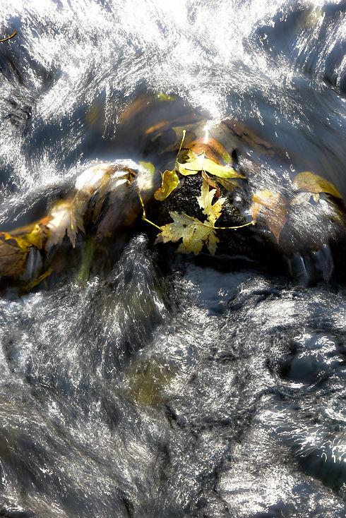 Rushing River Water John Weiss.jpg