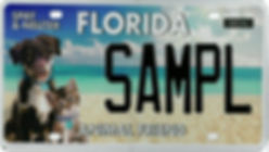 FAF license plate logo.jpg