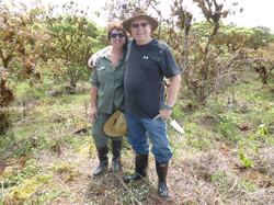 11-1-14 Scalesia Planting, Santa Cruz Island (29)