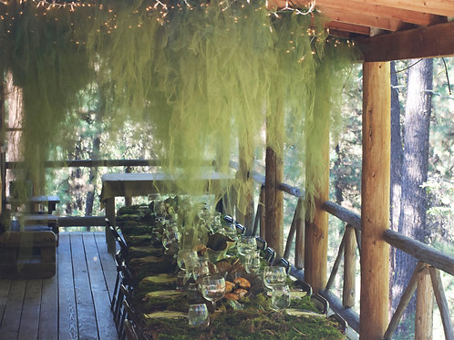 Hanging moss installation