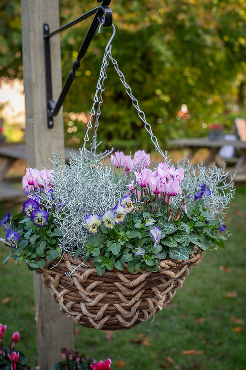 "14"" Hanging Basket (Round base)"